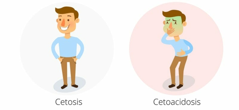 cetosis contra cetoacidosis