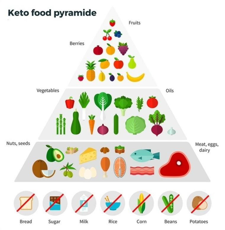 cetosis pirámide alimenticia