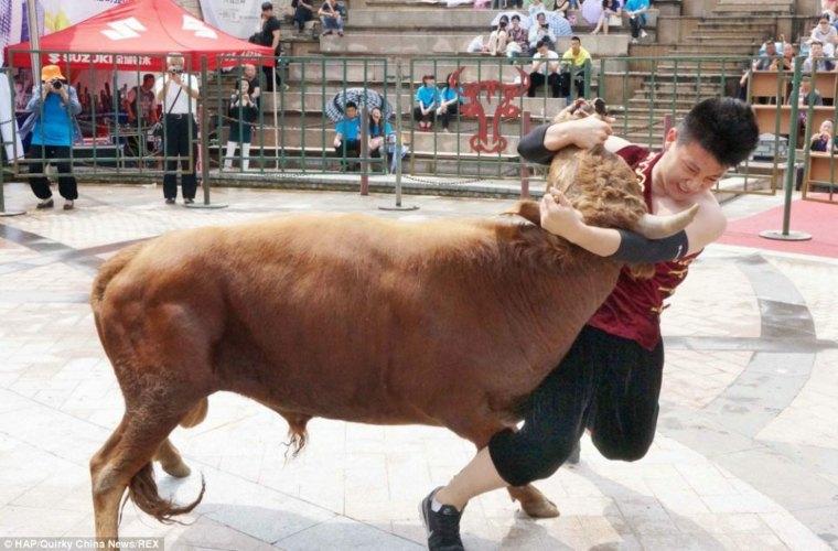 corrida de toros china