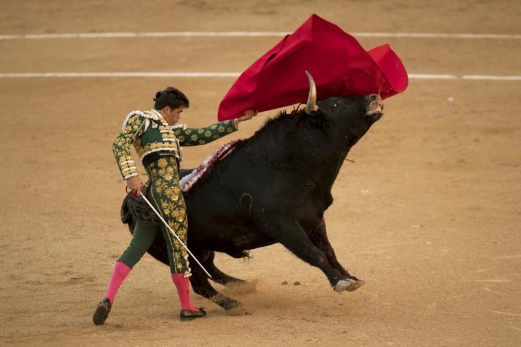 corrida de toros española