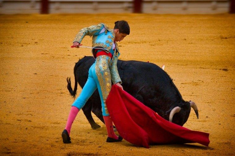 corrida de toros espectáculo