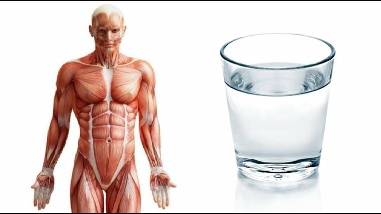 beber-mucha-agua-beneficios-ideas-bienestar