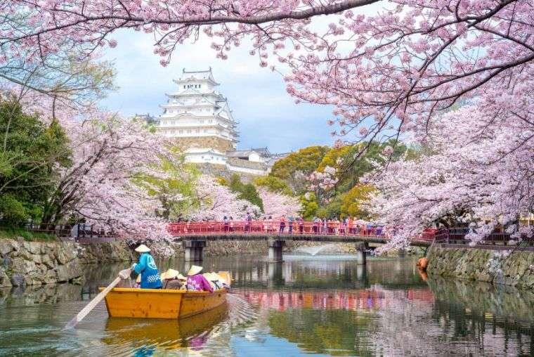 festival-de-flores-japon