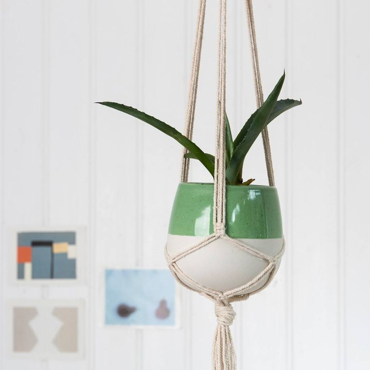 plantas-colgantes-papel-pared-estilo-original