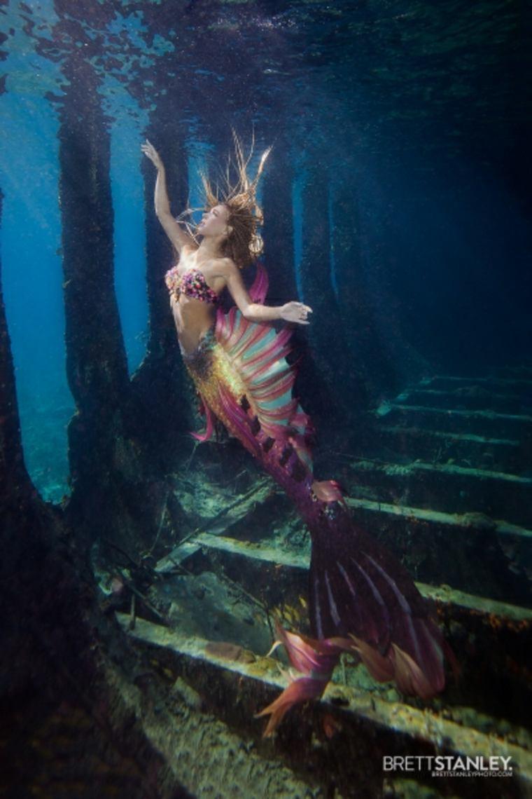Brett Stanley fotografía subacuática