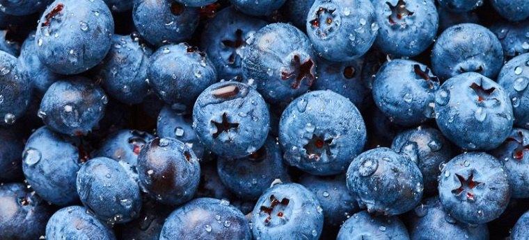 antienvejecimiento-comida-alimentos-arandanos