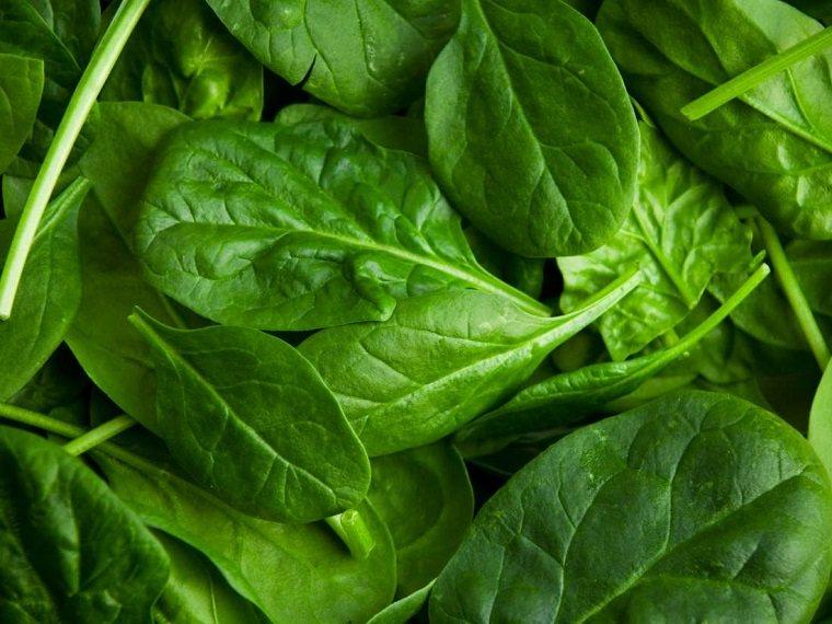 antienvejecimiento-comida-alimentos-espinaca