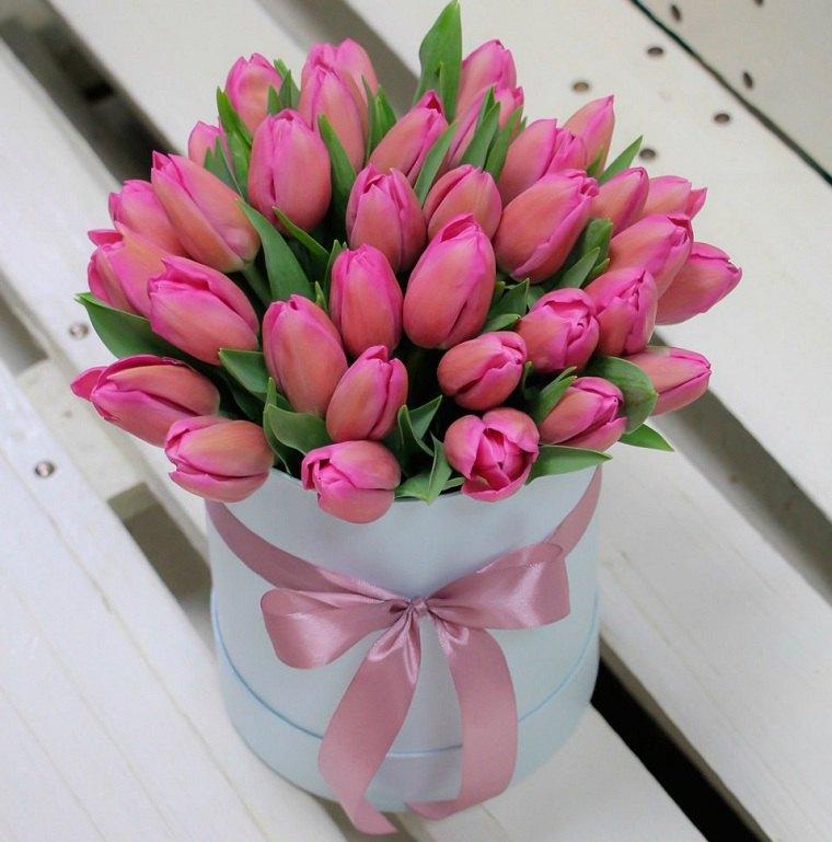 como-plantar-tulipanes-guia-ideas-opciones
