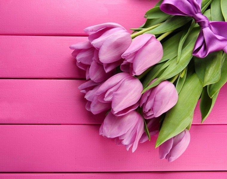 cómo plantar tulipanes guia-ramo-bello