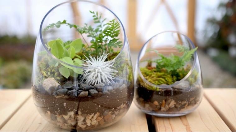 consejos-hacer-terrario-casa-ideas