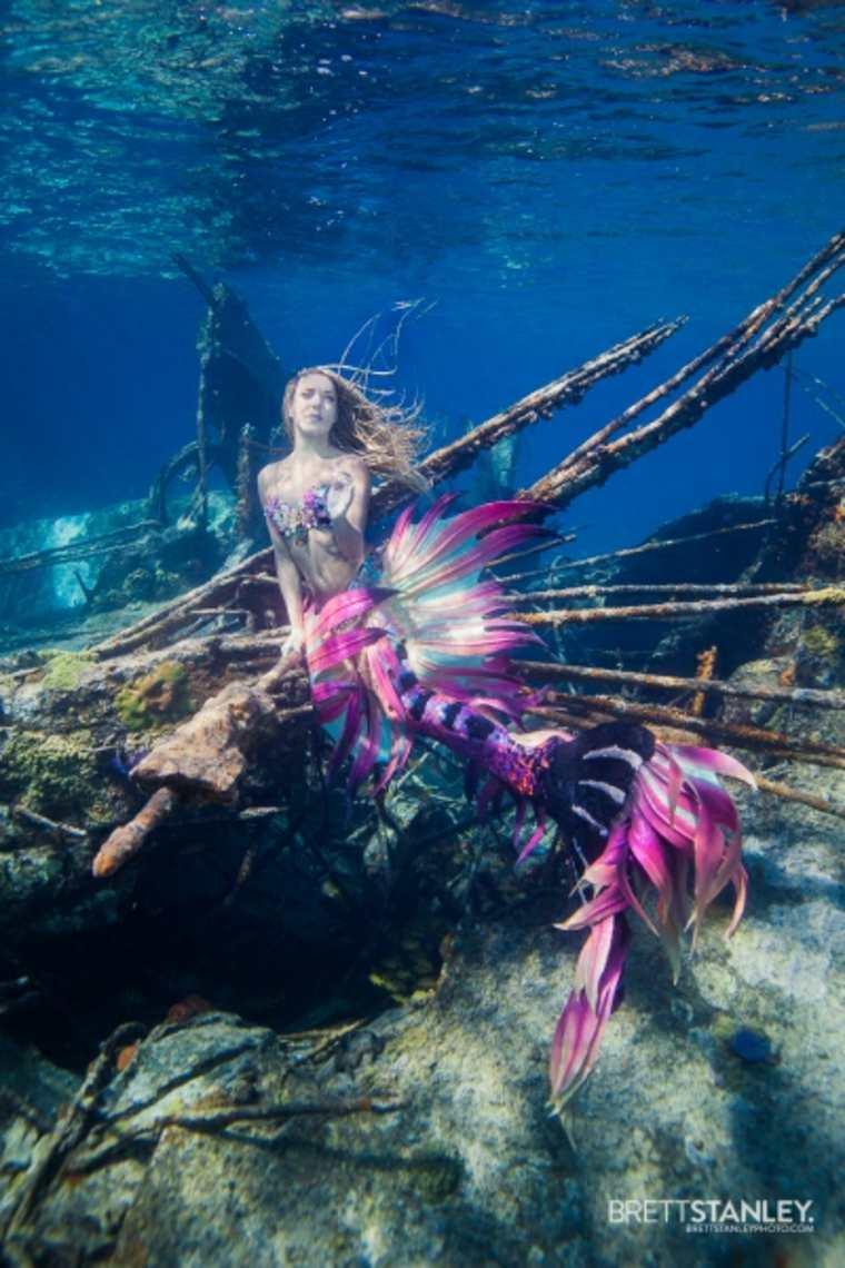 el mundo subacuático