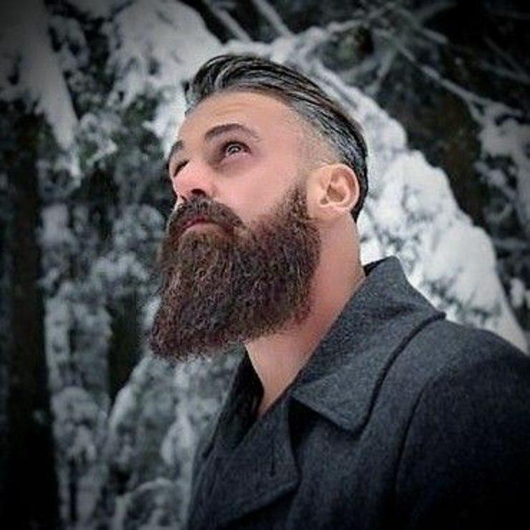ideas para barbas