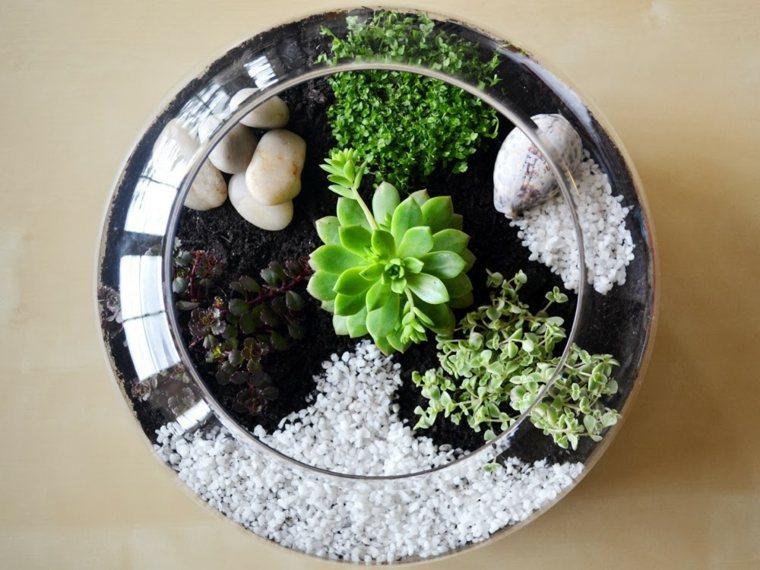jardin-suculento-opciones.pequeno
