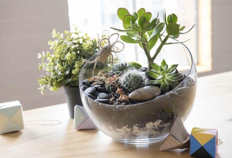plantas-suculentas-ideas-terrario