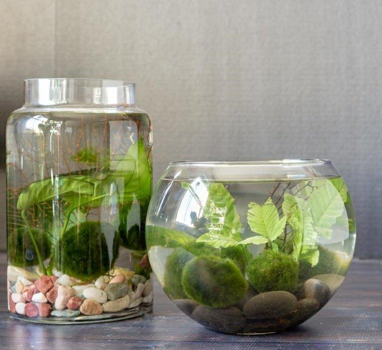 terrario-agua-opciones-casa-decorar