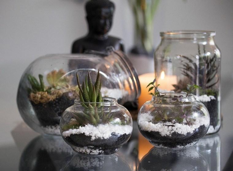 terrario-agua-opciones-casa-moda