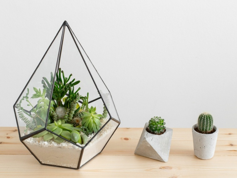terrario-grande-forma-triangulo