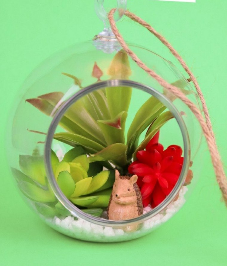 terrario-plantas-suculentas-ideas
