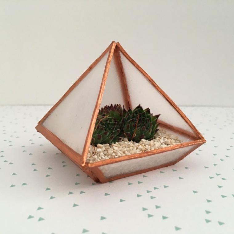 terrario-plastico-estilo-ideas