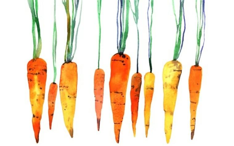 alimentación intuitiva zanahorias
