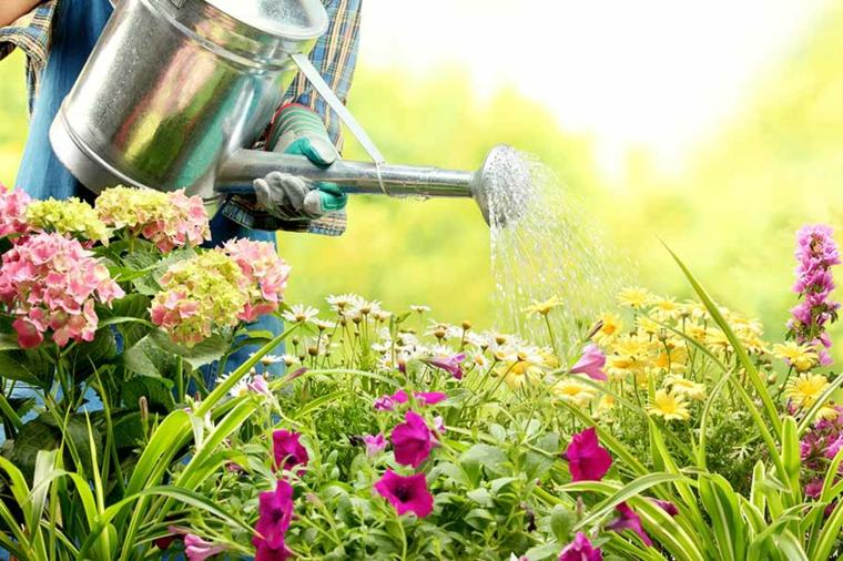 decoración de jardines ideas