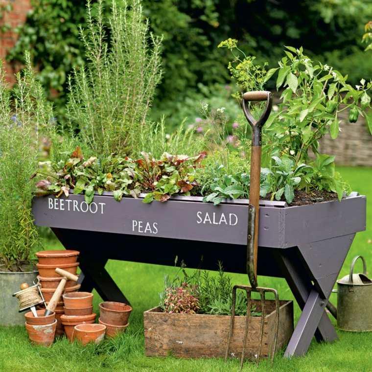 decoración de jardines plantas