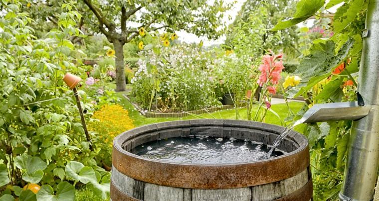 diseño de jardines barril con agua