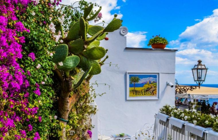 garden and terrace design