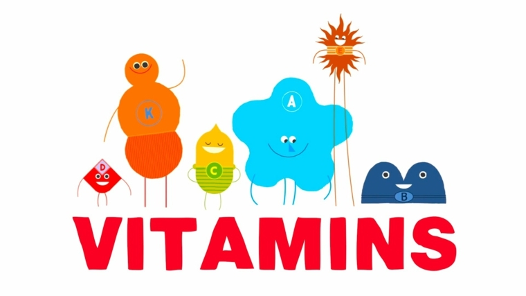 las vitamitnas son importantes