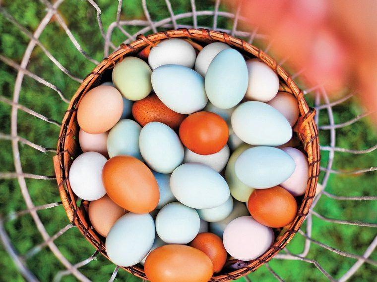 los-huevos-buenos-malos-salud