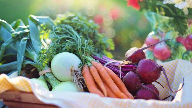 sobrepeso-alimentos-vida-rural
