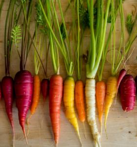 vegetales con fibras