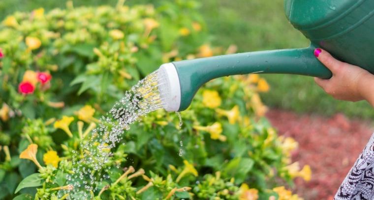 cómo regar el jardín