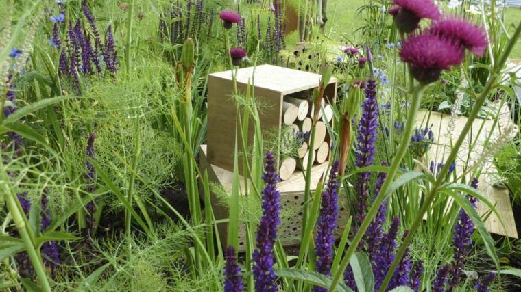 jardinería en casa plantas-belleza