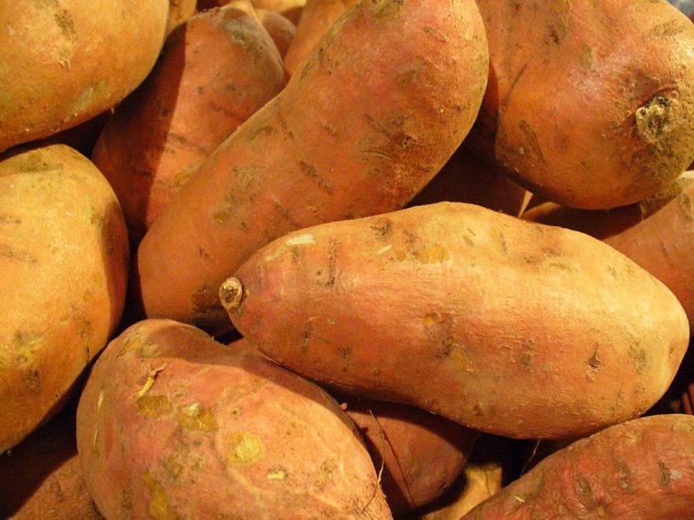 Patata Dulce – Propiedades y beneficios para nuestra salud