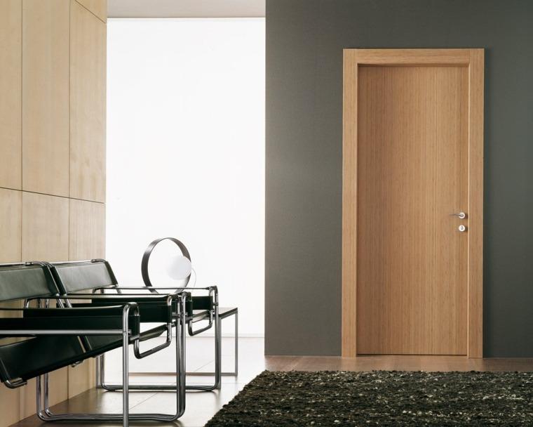 puerta lisa moderna