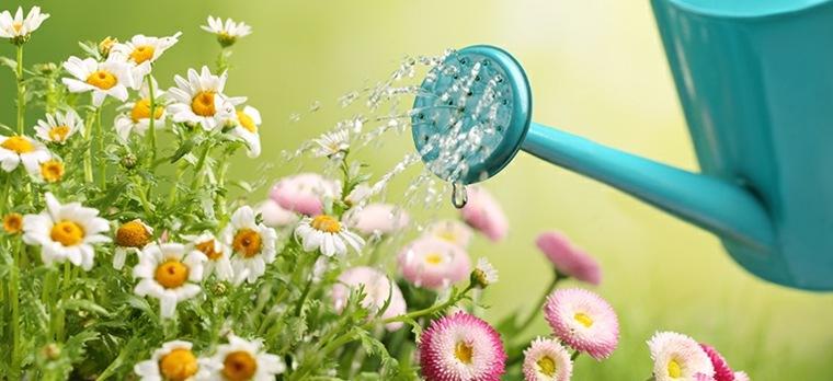 riego de flores