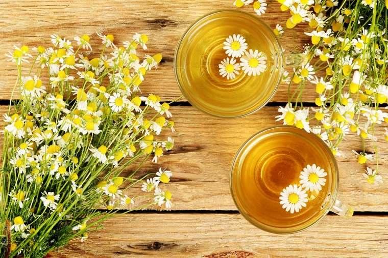 té natural-tomar-noche-perder-grasa