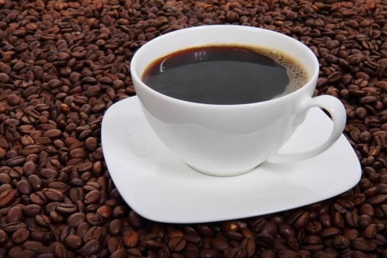 cafe para las plantas cefe