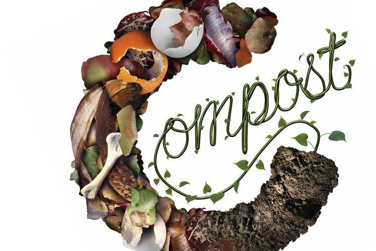 cafe para las plantas compost2