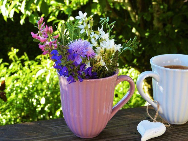 cafe para las plantas riegos
