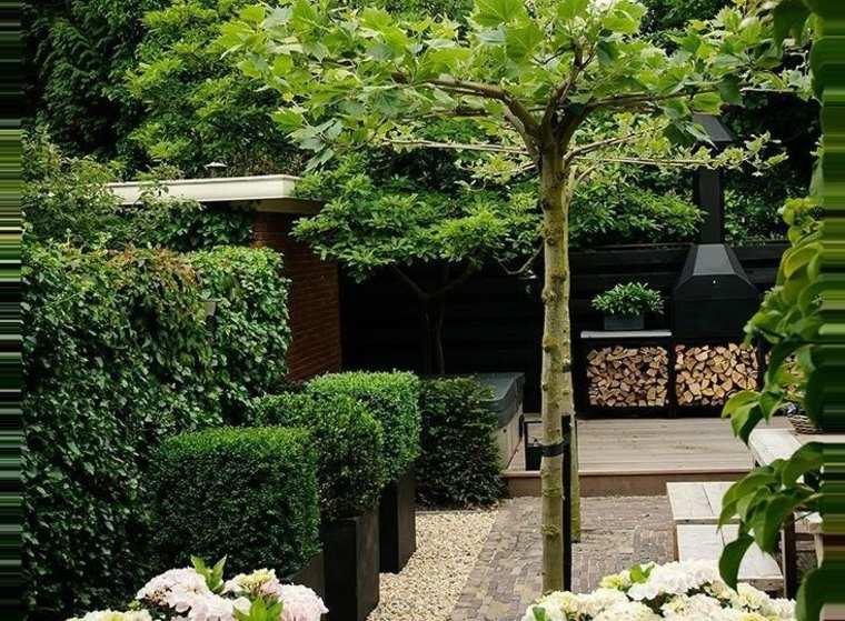 Diseño de patio moderno