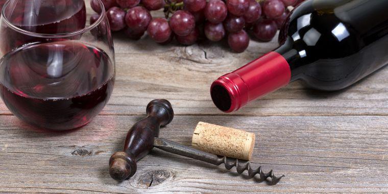 gastronomia española vinos