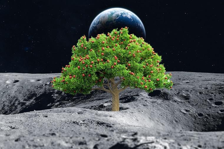 nasa-frutas-cultivo-espacio-futuro