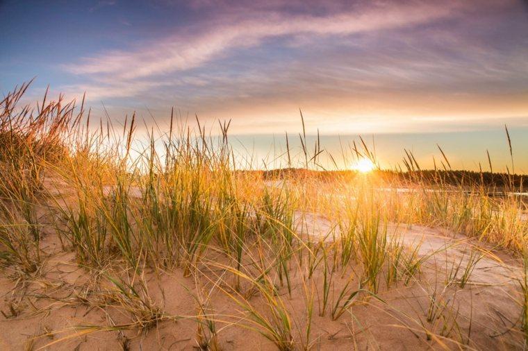 opciones-estilo-vida-verano-sol