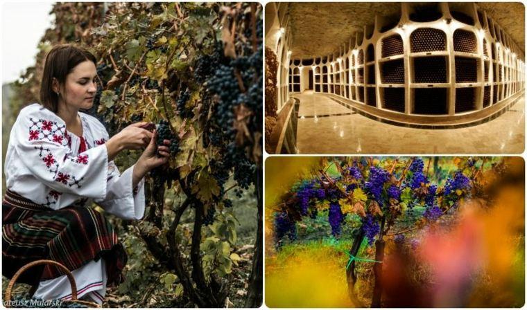 vinos de Moldavia