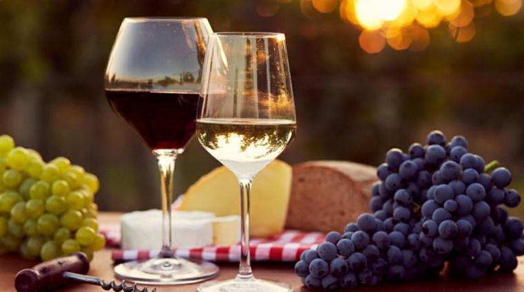 Variedades de vinos en Moldavia