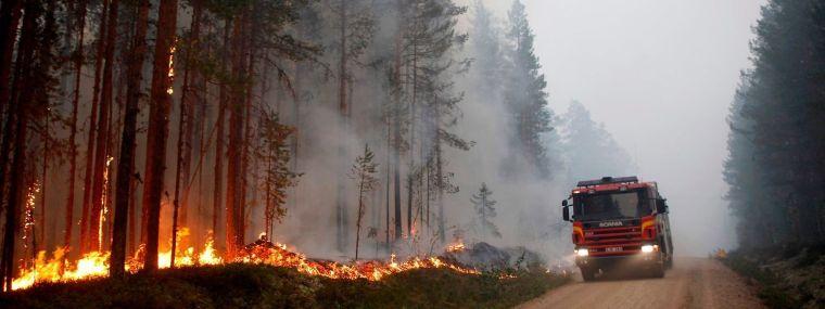 causas de los incendios forestales apagar