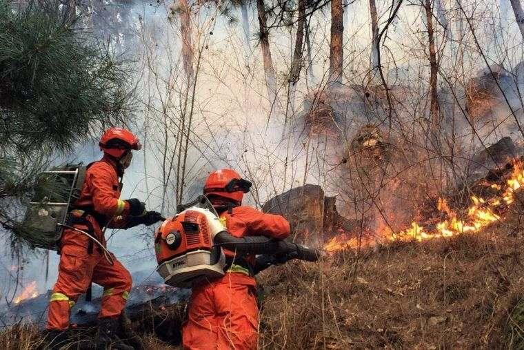 causas de los incendios forestales bomberos
