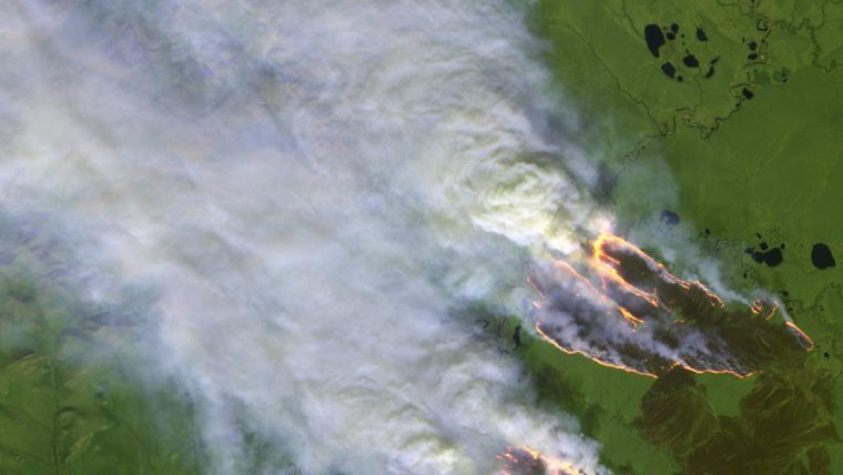 causas de los incendios forestales calor